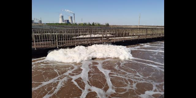 焦作鱼粉污水处理 欢迎来电  上海泰北实业供应