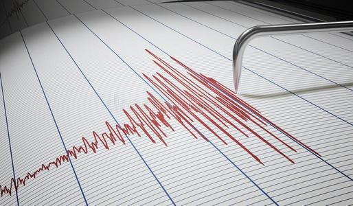 浦东新区地震标准,地震