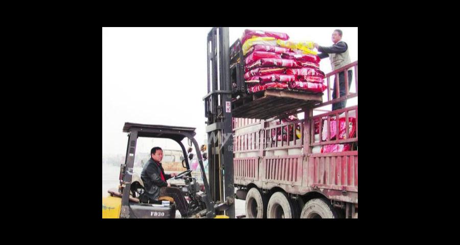 黄浦区到杭州汽车运输价格 诚信互利 上海嘉闵国际物流供应