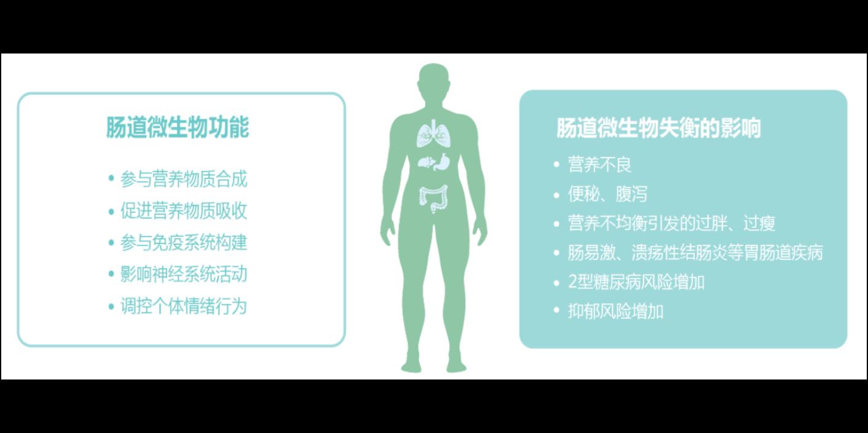 山東自閉癥患者菌群檢測常用方法 歡迎咨詢「上海沃本生物科技供應」