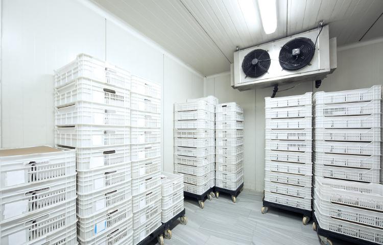 生鮮冷藏庫方案價格 推薦咨詢 上海翔育冷鏈物流供應