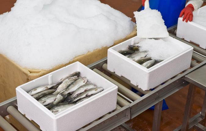 冷凍凍品物流運輸 歡迎咨詢 上海翔育冷鏈物流供應