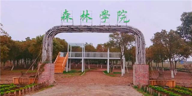 上海周边生态大爱城二手房 上海下将网络供应