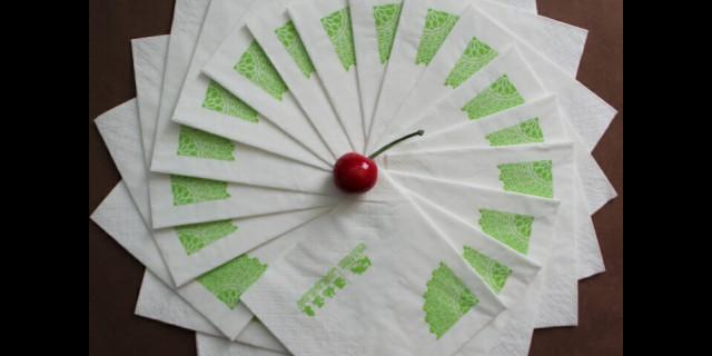 福建健康纸制品的制造系列