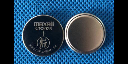 上海12v100锂电池公司 上海奕泛电池供应