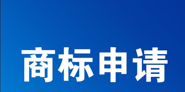 宝山区财务代理注册公司哪一家好,公司