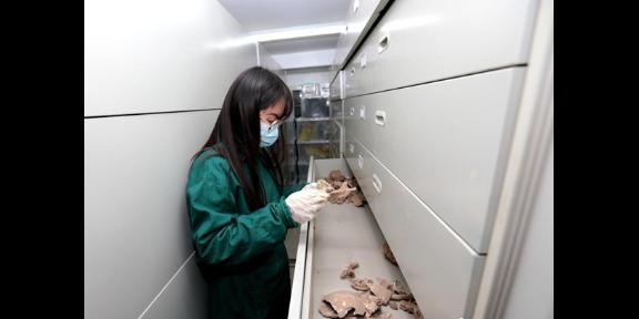 江苏研发实验室设计施工 服务为先 上海誉茂净化科技供应