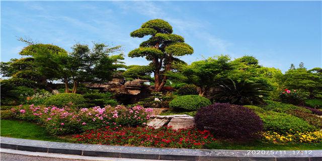 崇明岛价格较低的墓地有哪些 上海瀛新园陵园供应