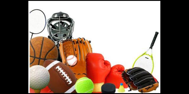 金山区智能体育用品价格信息