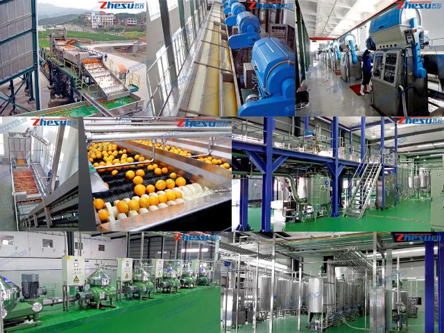 河南乳制品/果蔬汁飲料生產線整體解決方案