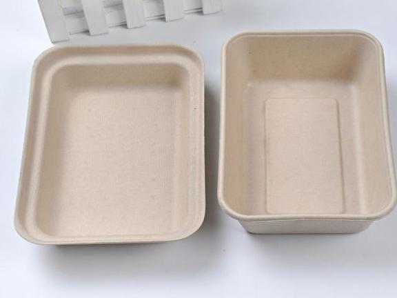 嘉兴一次性快餐盒生产厂家