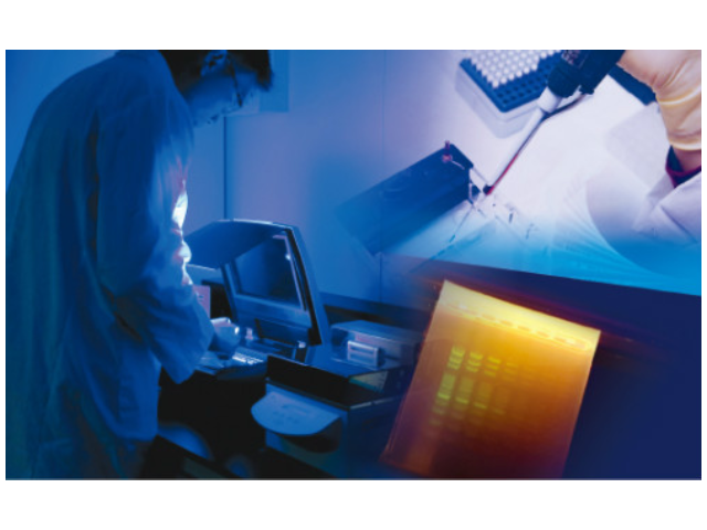 无锡菲林胶片影像检测仪销售厂家 欢迎来电 上海中晶科技供应