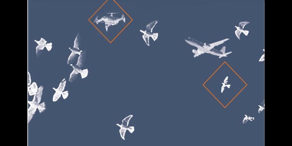 沈陽專業型鳥情探測系統定制,鳥情探測系統