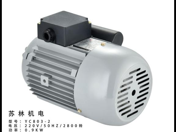 廣東純銅電容啟動電動機 服務為先 臺州蘇林機電供應