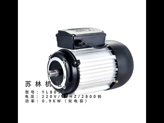 廣東電容啟動電動機廠家供應 推薦咨詢 臺州蘇林機電供應