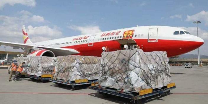 广东文件航空货运