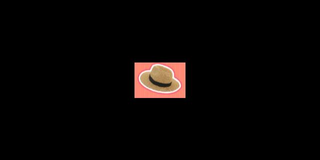 宁波帽子供应
