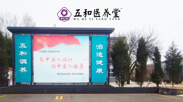 錦州苦蕎茶五和醫養堂 和諧共贏「山西振東五和健康科技供應」