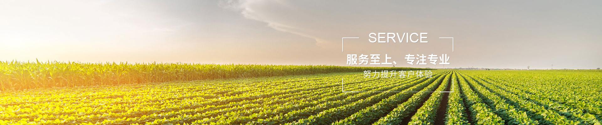 張家港創新國內陸運收購價「蘇州市正天貨運有限公司」