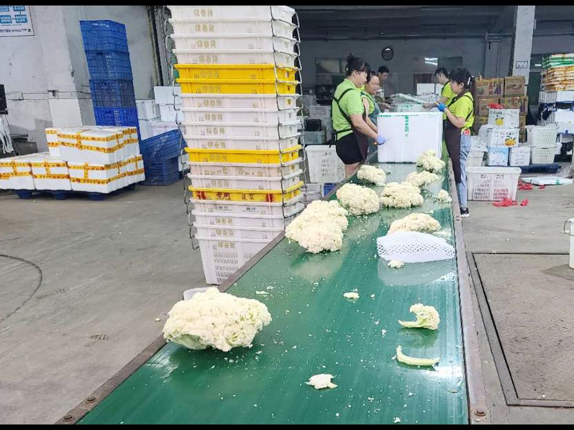 豆制品配送公司  深圳市绿春翔供应