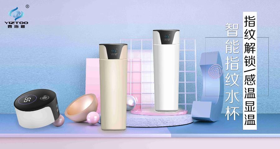 合肥304保温杯怎么去茶渍「深圳市芯指通科技供应」