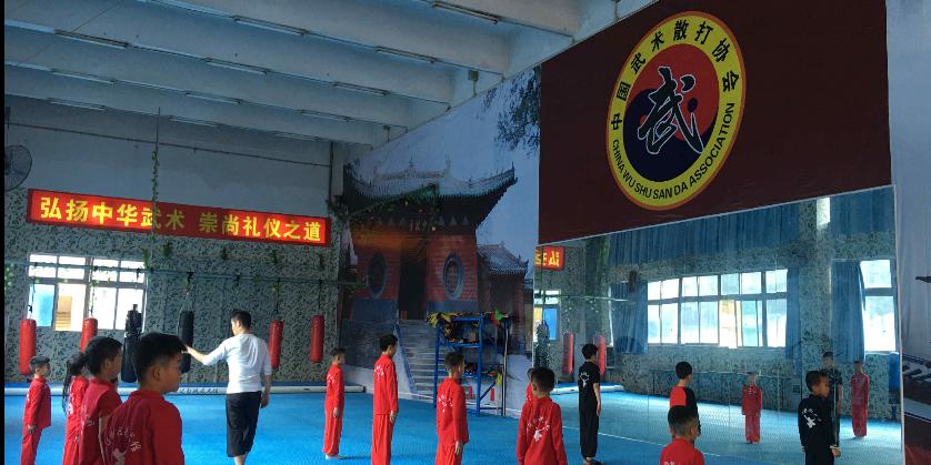 廣東專業動作武術培訓