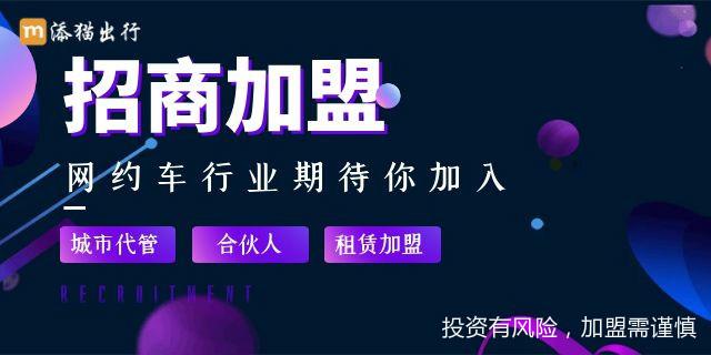 惠州代理網約車平臺哪家好 服務為先「添貓科技供應」