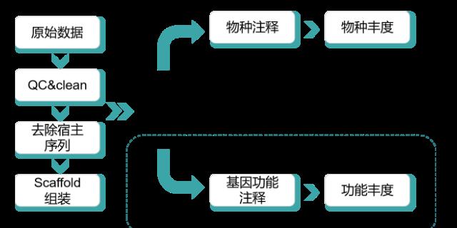 山東口腔微生物測序找哪家 歡迎來電「上海探普生物科技供應」
