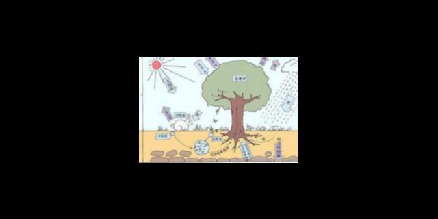 松江区品质生物医药共同合作