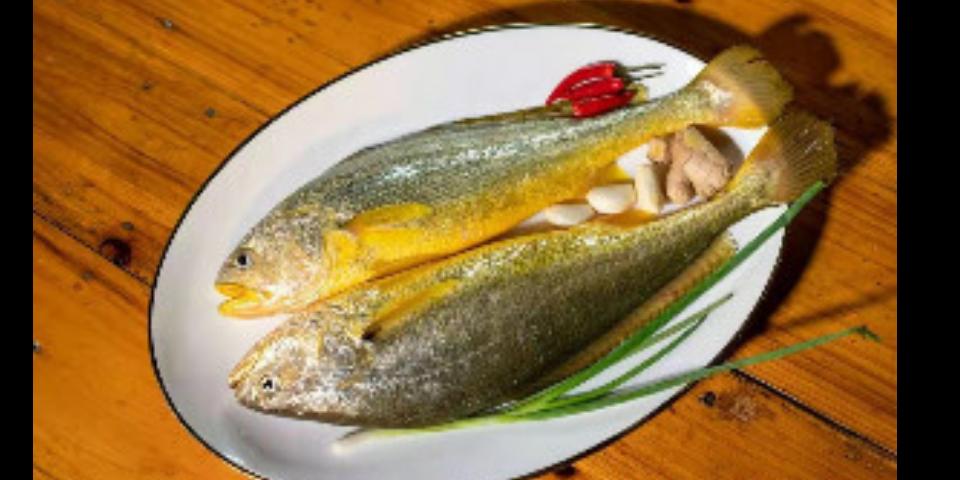 浙江台州冰冻大黄鱼一斤多少钱 推荐咨询「台州广源渔业供应」