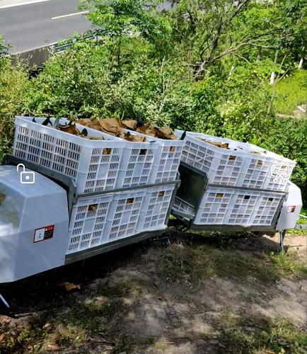 嘉兴果园运输机多少钱 服务至上 台州合祥机械供应
