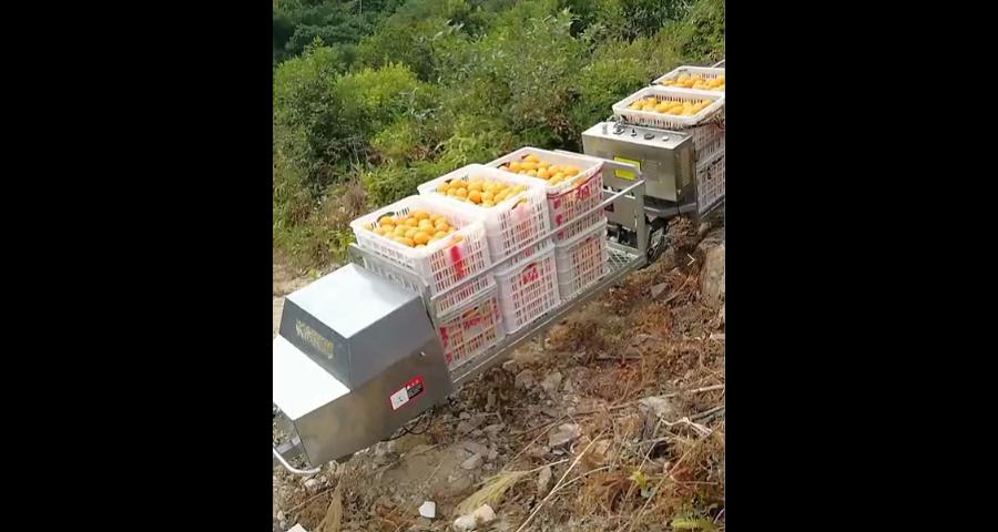 珠海果园运输机哪家好 贴心服务 台州合祥机械供应