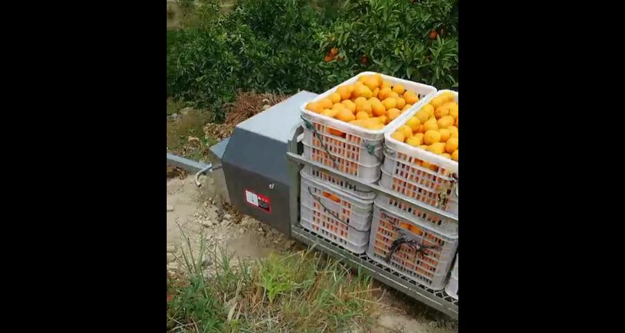 黄浦区果园运输机多少钱,果园运输机