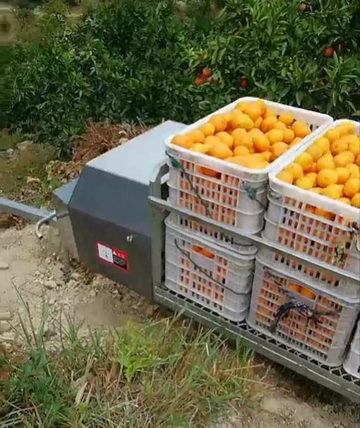 九江果园运输机报价 服务为先 台州合祥机械供应