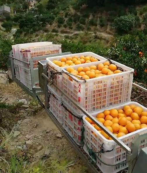 清远果园运输机有什么作用 抱诚守真 台州合祥机械供应