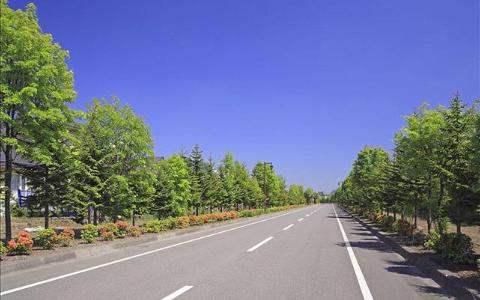 上海宝山沥青路面工程 望南机械设备租赁供应