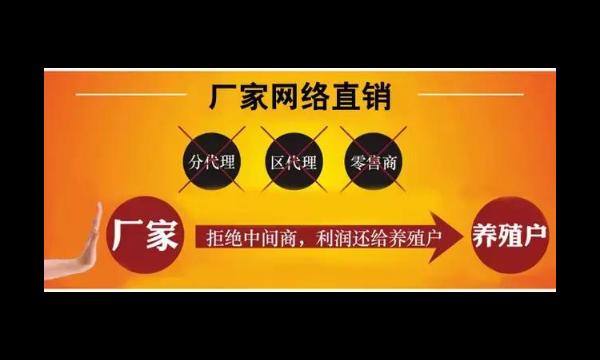 昆明牛饲料批发厂家哪家好 诚信经营「云南网农农业饲料批发供应」