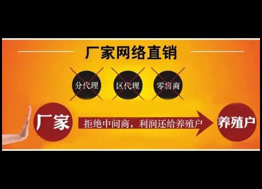 昆明猪教槽饲料厂价销售 真诚推荐 云南网农农业饲料批发供应