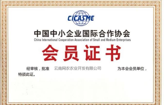 鸡饲料批发厂家 服务至上「云南网农农业饲料批发供应」
