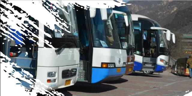 贵州车辆管理系统生产供应 值得信赖「上海万位数字技术供应」