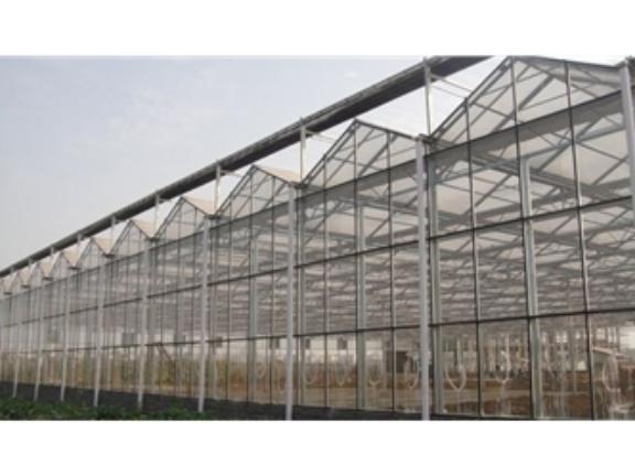 钢结构玻璃温室的单方造价 诚信互利「山东瑞庆机电设备供应」