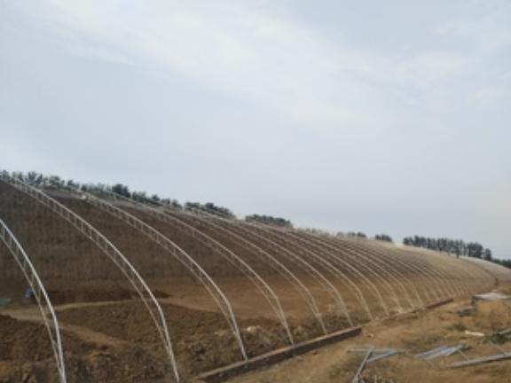 玻璃智能溫室大棚工程 誠信服務「山東瑞慶機電設備供應」