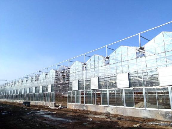 屋頂全開啟連棟溫室 歡迎來電「山東瑞慶機電設備供應」