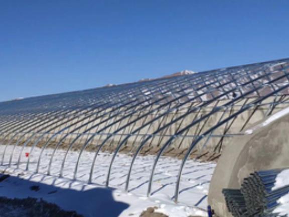 連棟溫室大棚施工 抱誠守真「壽光澤惠農業科技供應」