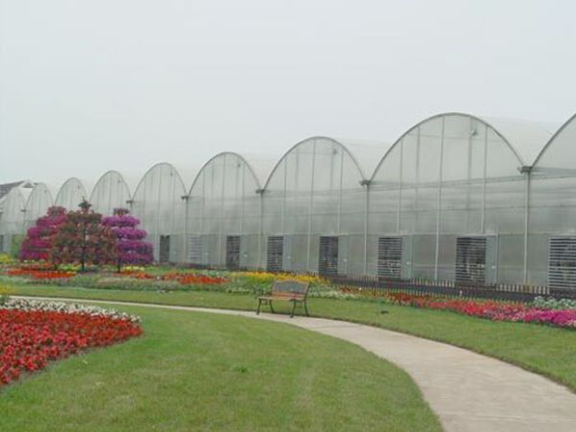 pc板连栋温室报价 抱诚守真「寿光泽惠农业科技供应」