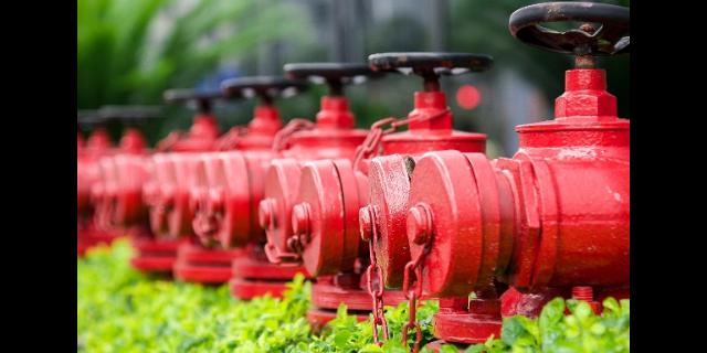 上海质量技术转让厂家批发价