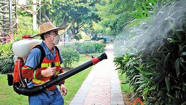 蚊子防治报价,防治