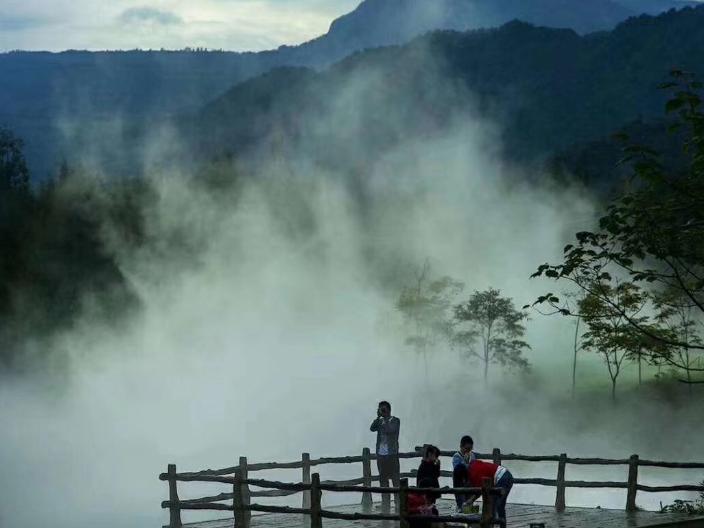湖北高压喷雾机价格 服务为先 武汉御蓉水艺环保科技供应
