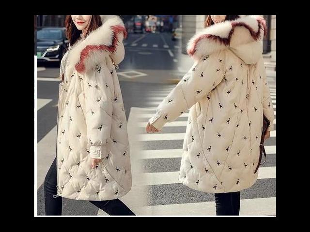 中大便宜的羽绒服面料 和谐共赢「吴江市顺志纺织品供应」