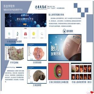 形态学教学系统 医学教学系统 数字化虚拟教学系统